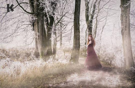 ... winter princess ...