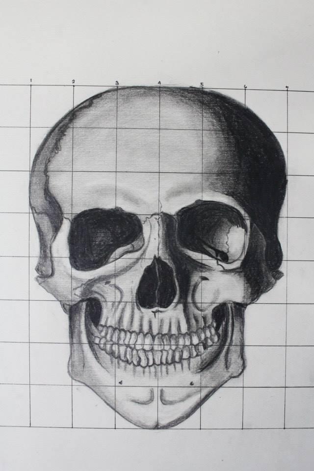 Skull - pencil by eistienejohn