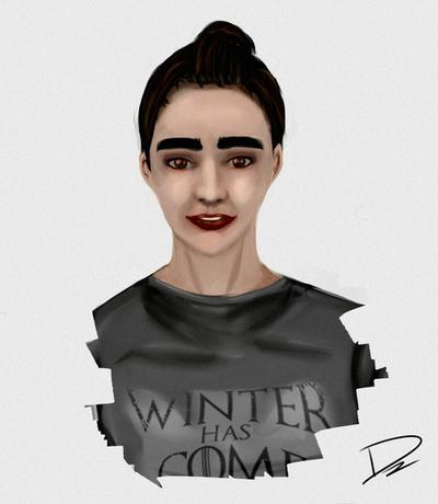 Winter has come! by Dzenrei