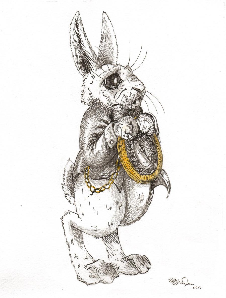 The White Rabbit by hayleymerrington on DeviantArt - photo#41