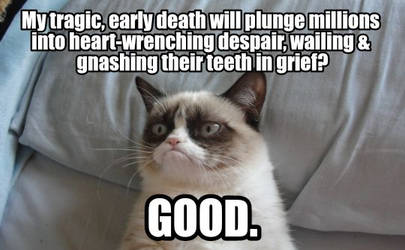 R.I.P Grumpy Cat, you were the best of us by 8416093059