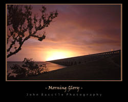 Morning Glory by barefootphotography