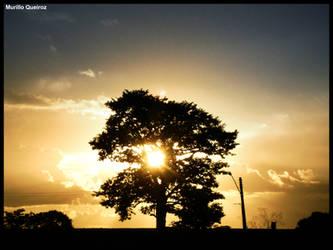 Por do sol by MurilloDesign