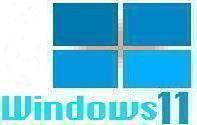 Windows 11 Parody Logo