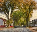 Cork Street, Halifax by Shawna Mac