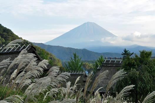Fuji wind