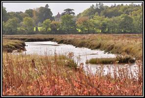 Enchanted marshland... by Omoidenoki
