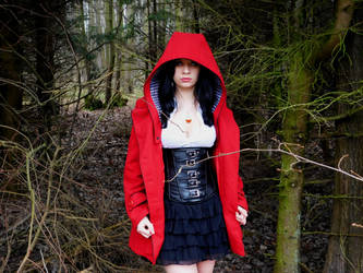 Little Red Riding Hood... by xAxRikkudouCosplay