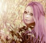 Autumn 1 by Mora-Nox