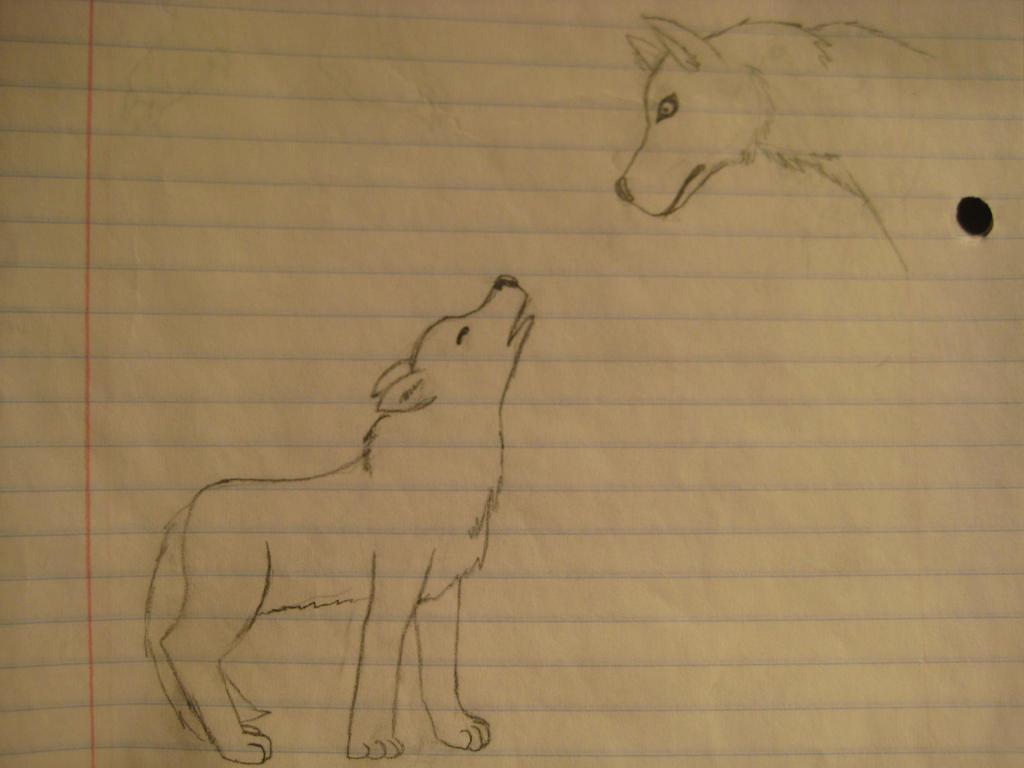 Simple Wolfies by GECKO-Nuzlockes