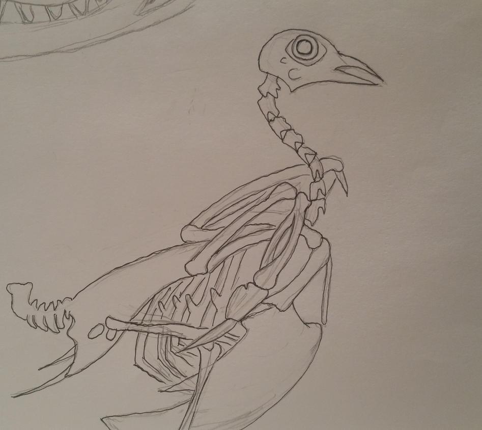Pigeon Skeleton by GECKO-Nuzlockes