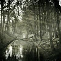 Winter Light II by ArjenCalter