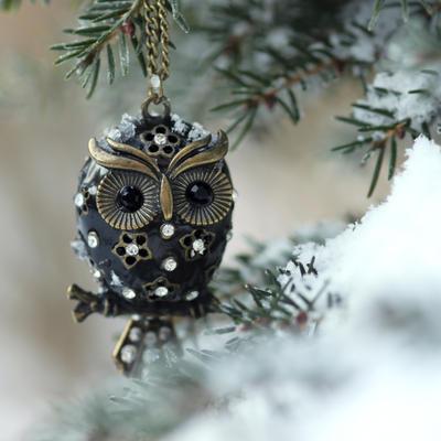 Snowy owl by lieveheersbeestje