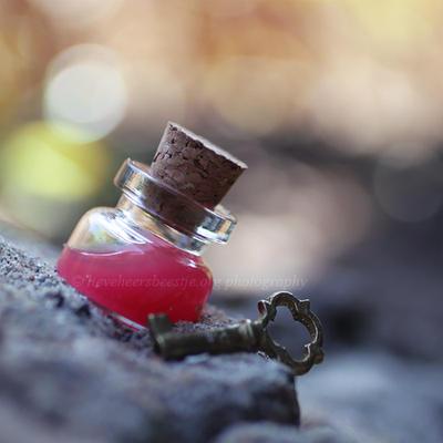 Red potion by lieveheersbeestje