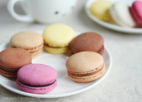 Colorful macarons by meganjoy