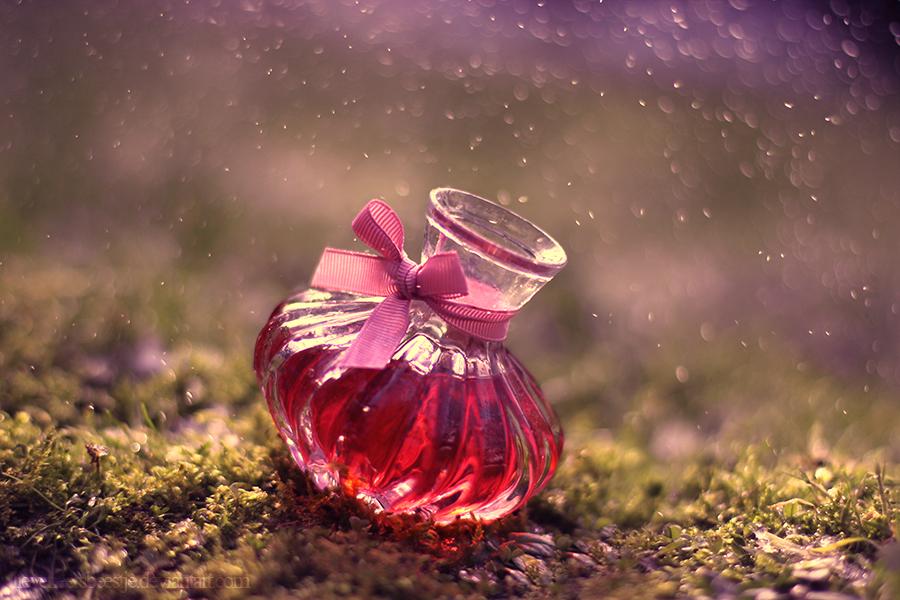 Valentine by lieveheersbeestje