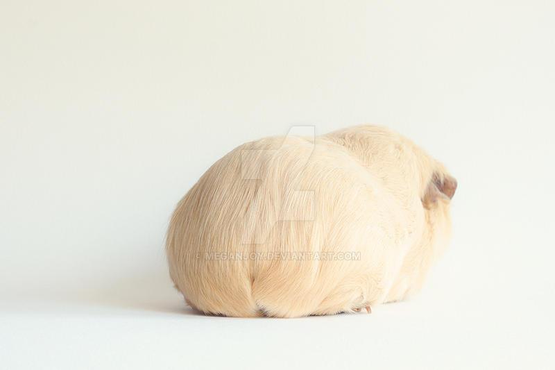 Booboolicious by lieveheersbeestje