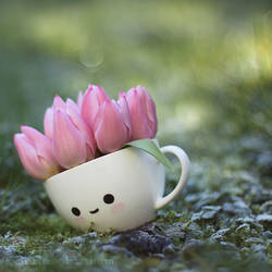 Cup with spring