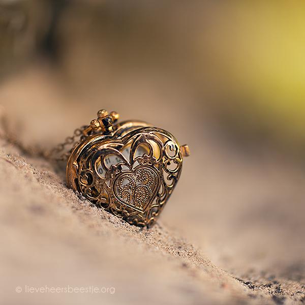 Romanticno srce - Page 10 Heart_of_gold_by_lieveheersbeestje-d69k1qw
