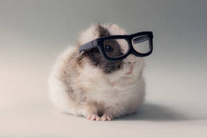 They say I am ugly with glasses on