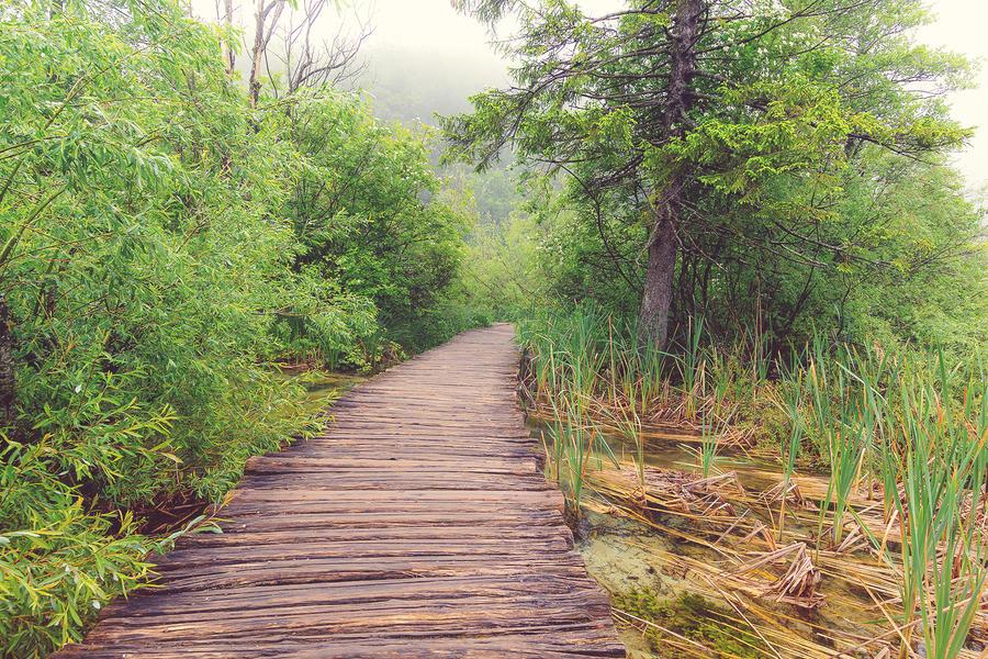 Plitvice lakes by meganjoy