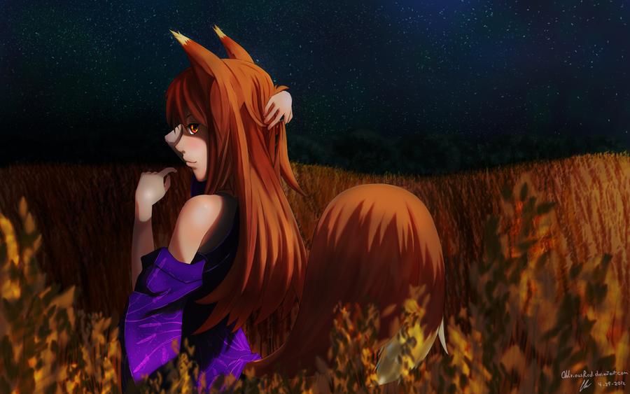Holo at Night by Murimu