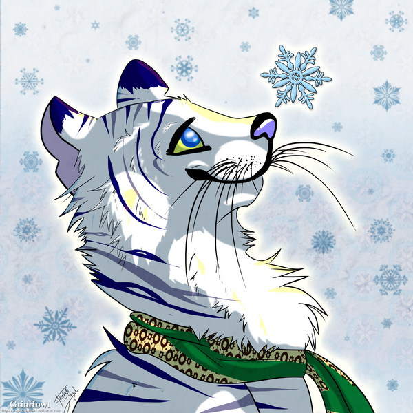 Stripes in the Snow by GrinHowl