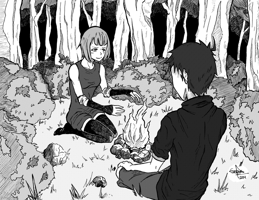 Campfire In The Forest By Sebfire