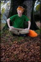 Robin Hood- A Fox by twinfools