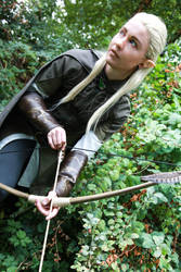 Legolas- Archer by twinfools