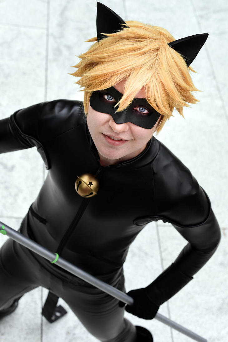 Chat Noir- Punny Guy by twinfools