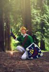 Link- Hero of Time