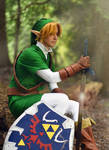 Link- The Boy Without a Fairy