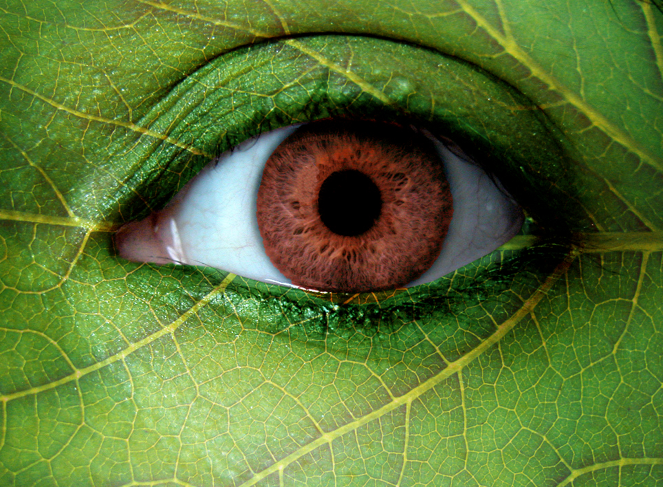 nature eye by Causus
