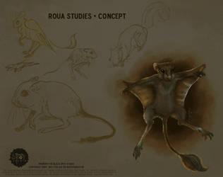 ROUA Concept01