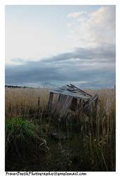 Wetlands - Shed by StrawBeth