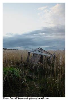 Wetlands - Shed