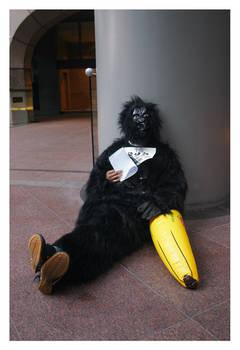 Gorillas - 4