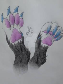 Feet paws practice