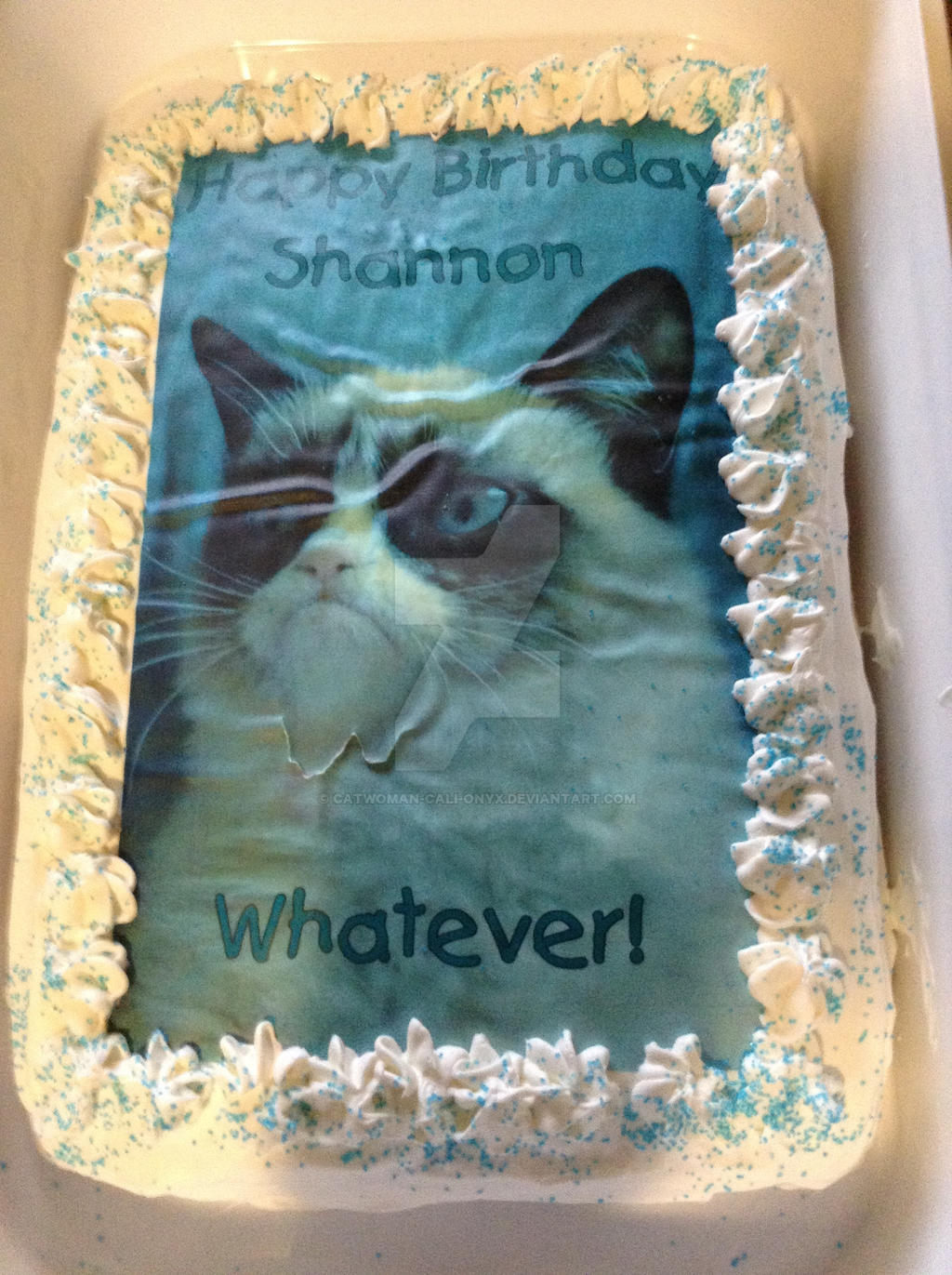 My Grumpy Cat Birthday Cake By CatWoman Cali Onyx