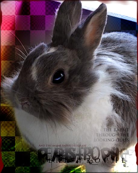 Peristrophe's Profile Picture