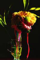 Blooming in the dark by antonij