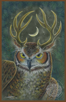 The Owl Stag