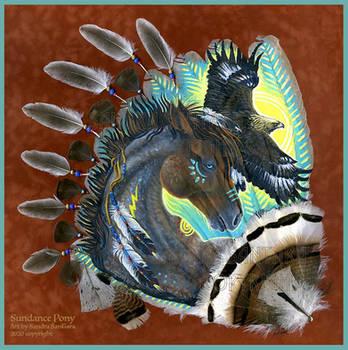 Sundance Pony