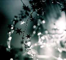 Star, Light by MyLaundryStinks