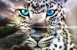 Tigers Journey