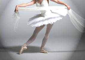 Ballet Grace by energizerbunnie