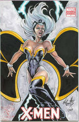 Storm Cover by ed-coutts