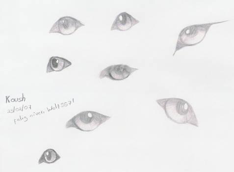 Estudo de Olhos