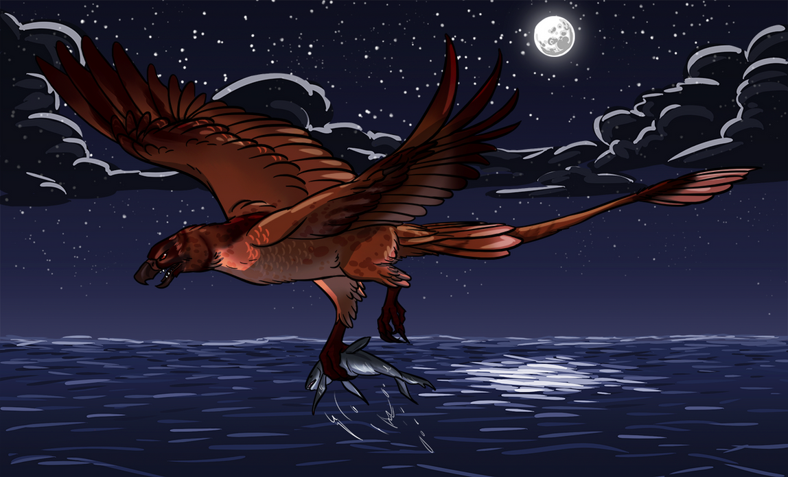 Solar Flare - Midnight fishing by ninaliz